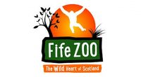 A crowd-funding effort for the fire-stricken Fife Zoo has raised over £5,000 in a single day. The popular tourist attraction had just re-opened to the public last week after Coronavirus […]